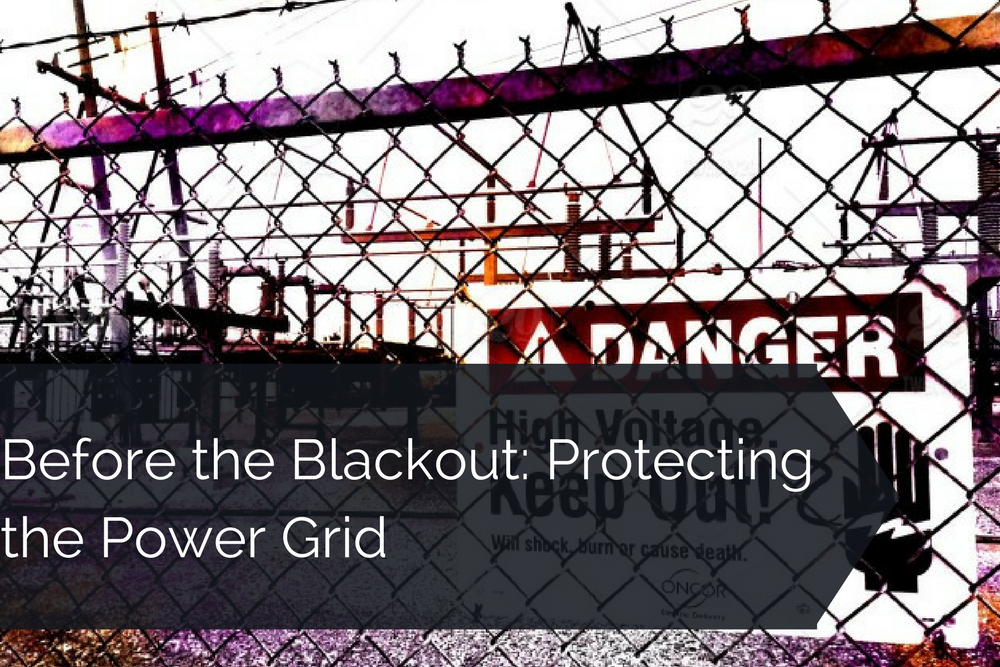 Protecting the Power Grid